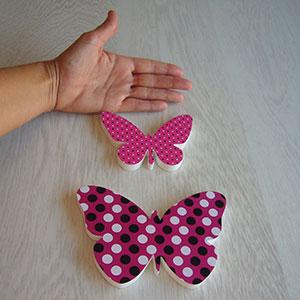 mariposas-1 Galeria 10