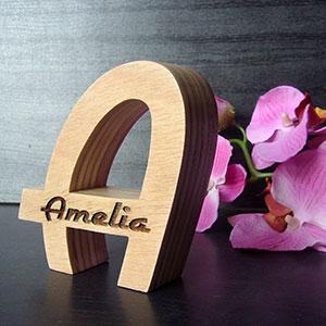 amelia-3 Galería 2