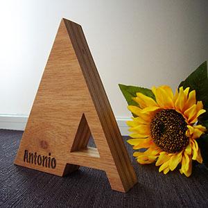 antonio-madera-3 Galería 2