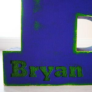 bryan-38 Galería 3