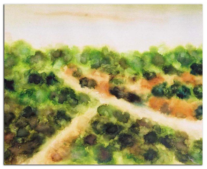 acuarelas-1-800x656 Mis cuadros abstractos