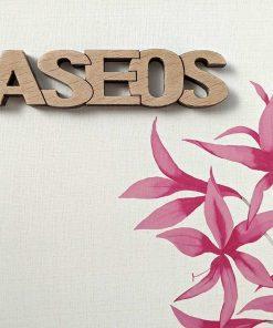 aseos-3-247x296 LETRAS DE MADERA PERSONALIZADAS Y TOTALMENTE ARTESANALES