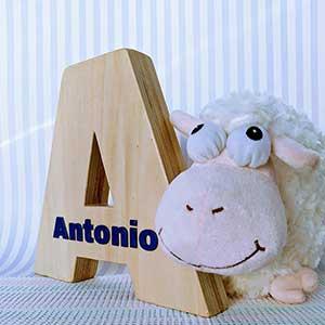 antonio-3 Galeria